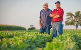 Застраховане на земеделски култури